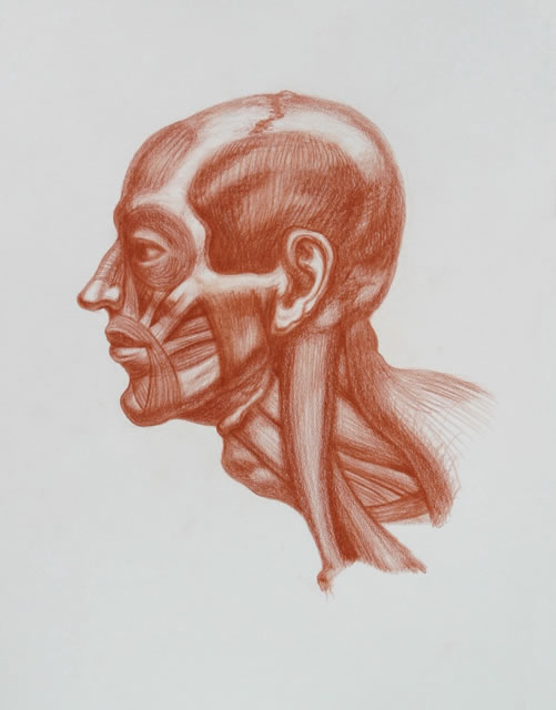 Michael M Hensley Master Draftsman Of The Human Form Artistic