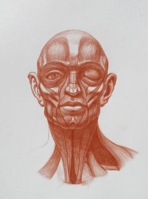 Michael M Hensley Master Draftsman Of The Human Form Artistic